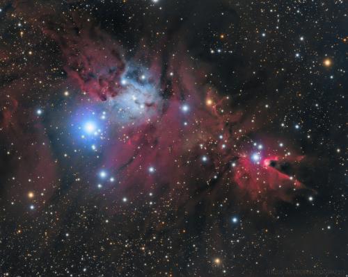 NGC-2264.png